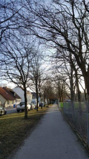 Straße am Morgen